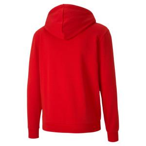 PUMA teamGOAL 23 Casuals Hooded Jacket