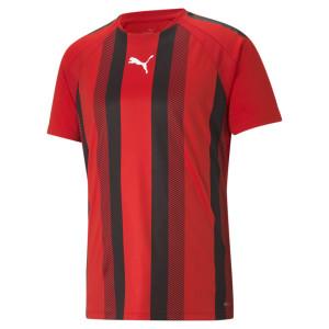 PUMA teamLIGA Striped Jersey