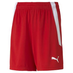 PUMA teamLIGA Shorts Jr.