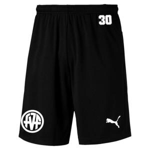FVF PUMA Training Shorts
